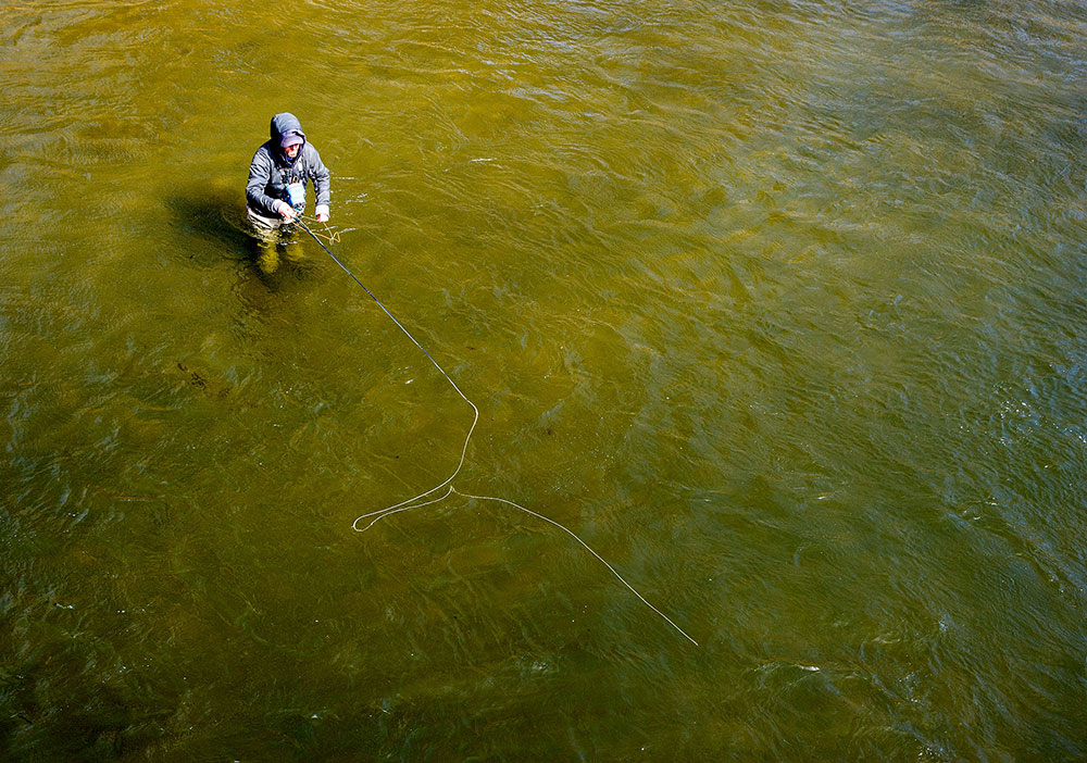 Cross Current Fly Fishing Insurance ambassador wading in river.
