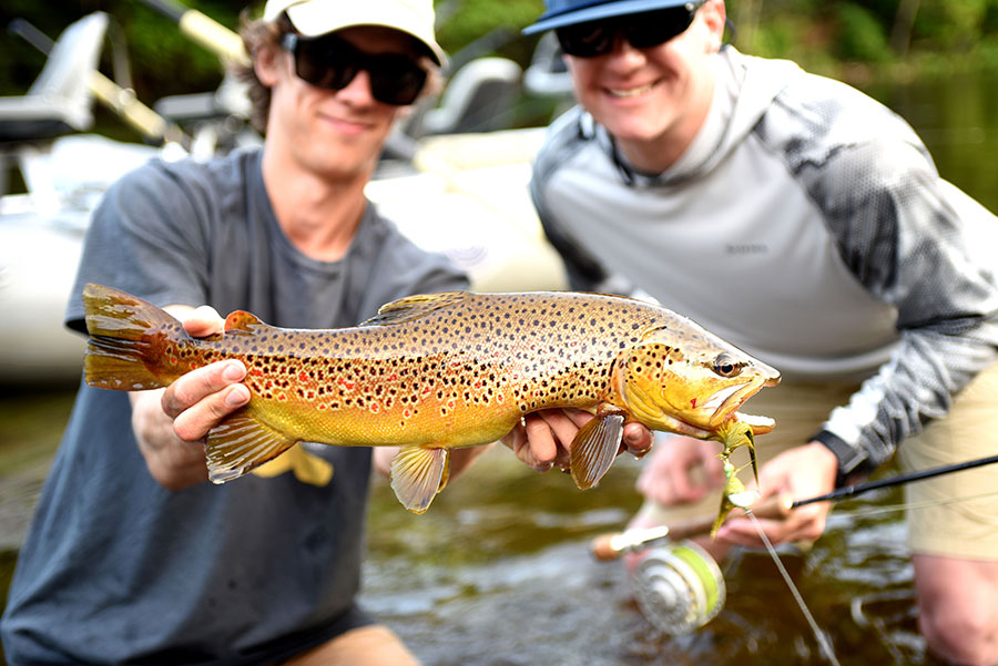 Fly fishing guide and client with brown trout