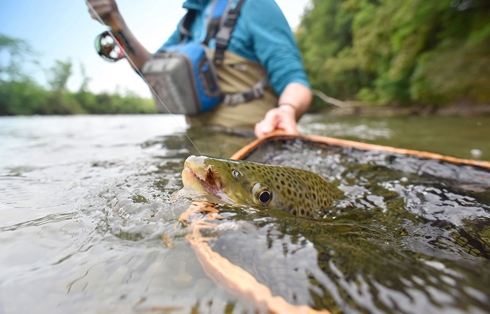 Angler catching a trout on his fishing lodge trip